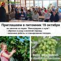 Виноградни с нуля 19 октября_.jpg