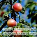 FF4C6BDB-8268-45F2-B9DB-782753D84D40.jpeg